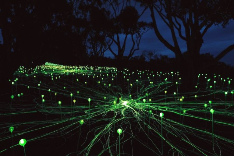 стихотворные световое поле азия фото поможет избавиться
